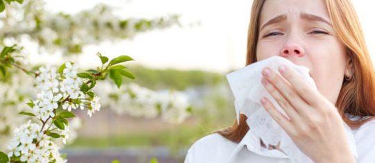 Prévenir et traiter les allergies