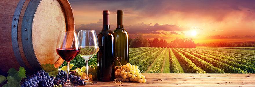 Vente en ligne de grands vins