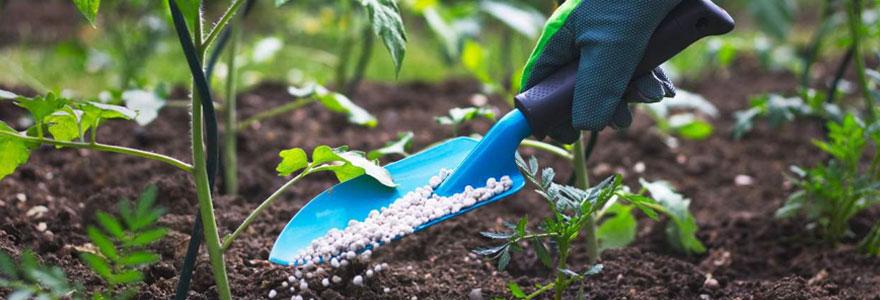 Amélioration de la production agricole
