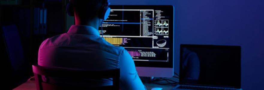 Programmeur développeur